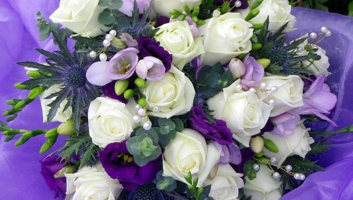 картинки на рабочий стол цветы самые красивые № 516991 без смс